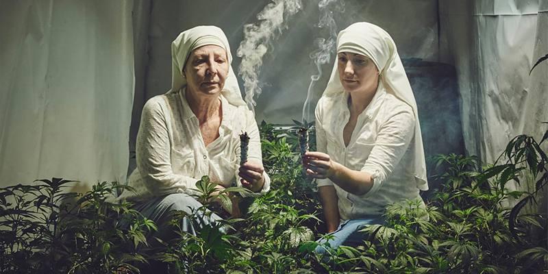 suore che coltivano Marijuana