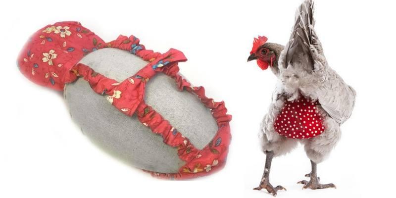 pannolini per galline
