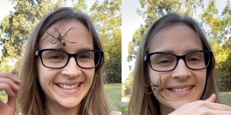 Tarni Roebuck, la ragazza che si fa camminare sul viso dai ragni